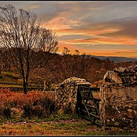 """Buy canvas prints of """"Autumn returns to Wasdale"""" by ROSALIND RIDLEY"""