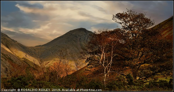 """""""Autumn trees and Great Gable"""" Canvas print by ROSALIND RIDLEY"""