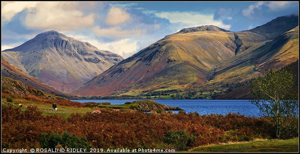 """""""Mountains at Wastwater"""" Canvas print by ROSALIND RIDLEY"""