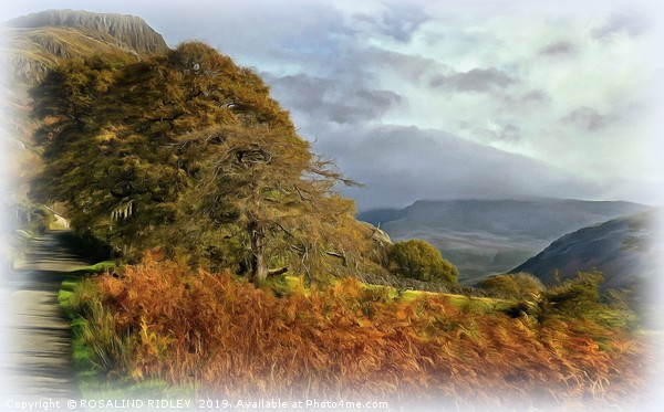 """""""Sunshine and mist over Wasdale"""" Canvas print by ROSALIND RIDLEY"""
