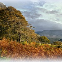 """Buy canvas prints of """"Sunshine and mist over Wasdale"""" by ROSALIND RIDLEY"""