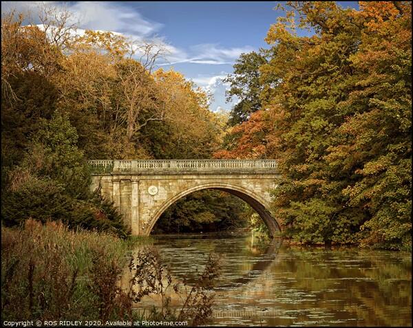 """Autumn at the bridge"" Canvas Print by ROS RIDLEY"