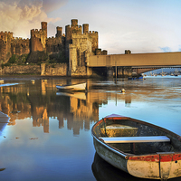 Buy canvas prints of  Conwy Castle by Mal Bray