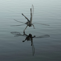 Buy canvas prints of  Flying reflecting fairy by Andrew Heaps