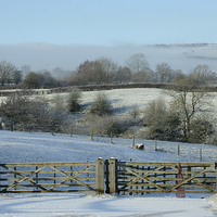 Buy canvas prints of  Winters Scene by Andrew Heaps