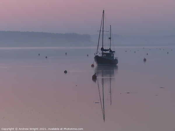 Dusky Pink Print by Andrew Wright