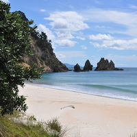 Buy canvas prints of  Pacific Coast, New Zealand by Simon Hackett