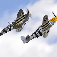Buy canvas prints of  spitfire & mustang close formation  by Andy Stringer