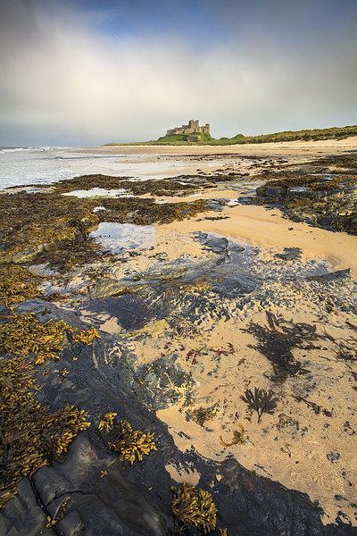 Bamburgh Beach Canvas print by Andrew Ray