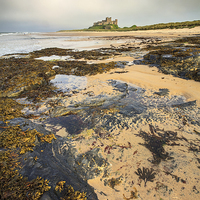 Buy canvas prints of Bamburgh Beach by Andrew Ray