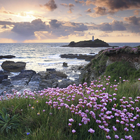 Buy canvas prints of Thrift at Sunset (Godrevy).tif by Andrew Ray