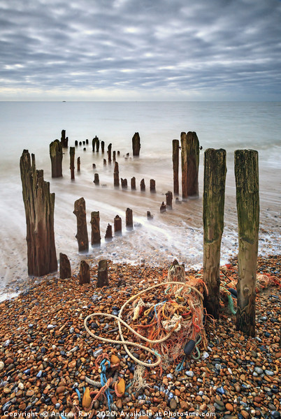 Groynes at Rye Harbour Canvas print by Andrew Ray