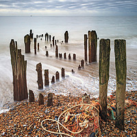 Buy canvas prints of Groynes at Rye Harbour by Andrew Ray