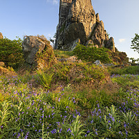Buy canvas prints of Spring evening (Roche Rock) by Andrew Ray