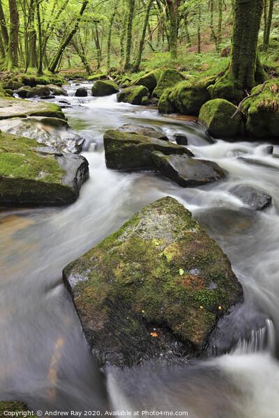 Rocks at Golitha Falls 2 Framed Print by Andrew Ray