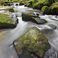 Buy canvas prints of Rocks at Golitha Falls 2 by Andrew Ray