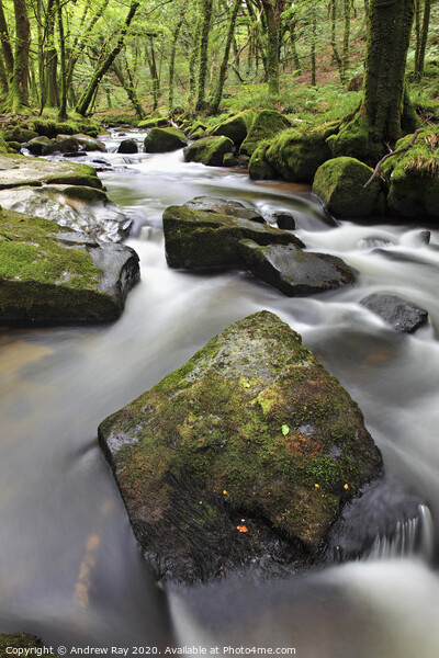 Rocks at Golitha Falls Framed Print by Andrew Ray