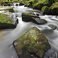 Buy canvas prints of Rocks at Golitha Falls by Andrew Ray