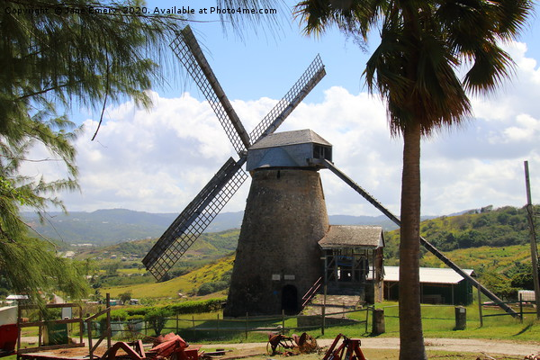 Windmill in Barbados Canvas print by Jane Emery