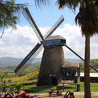 Buy canvas prints of Windmill in Barbados by Jane Emery
