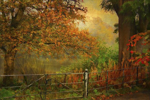 Autumn On My Mind  Canvas print by chrissie Judge