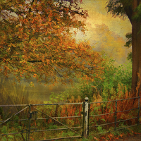 Buy canvas prints of  Autumn On My Mind  by chrissie Judge