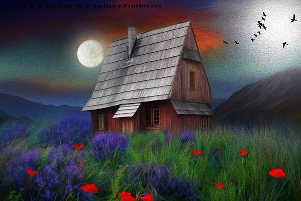 the little cabin  Canvas print by chrissie Judge