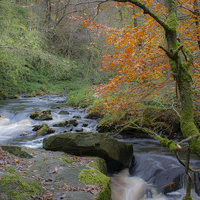 Buy canvas prints of  Hebden Beck by Phil Clarkson