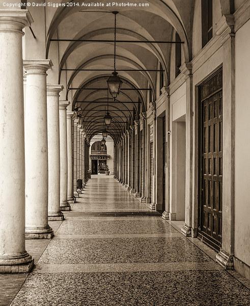 Italian Archway Canvas print by David Siggers