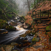 Buy canvas prints of Wyming Brook by jason thompson