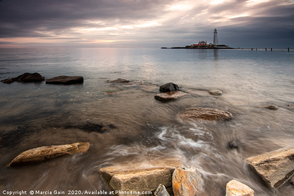 St Mary's lighthouse at sunrise Canvas Print by Marcia Gain