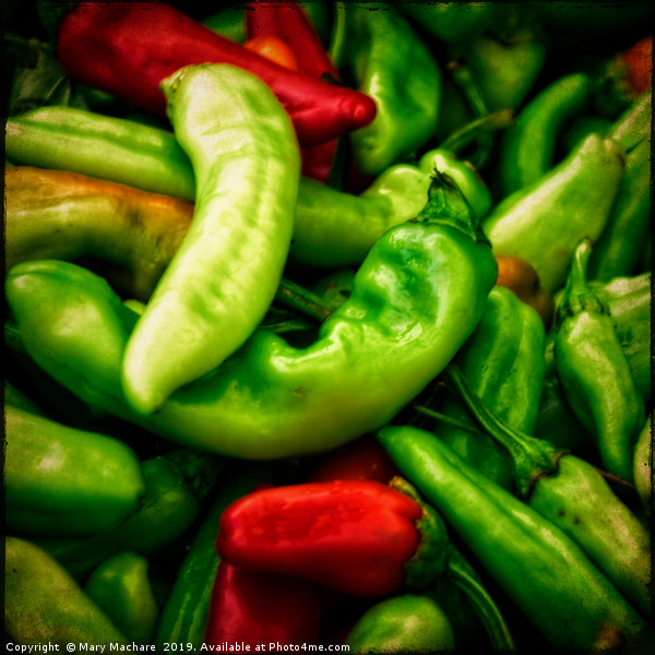 Peppers at the Market Canvas print by Mary Machare