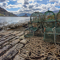 Buy canvas prints of Highland Life by John Malley