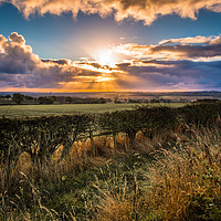 Buy canvas prints of Countryside Sunrise by Colin Morgan