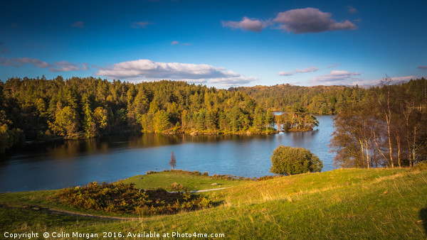 Tarn Hows in the Lake District National Park Canvas print by Colin Morgan