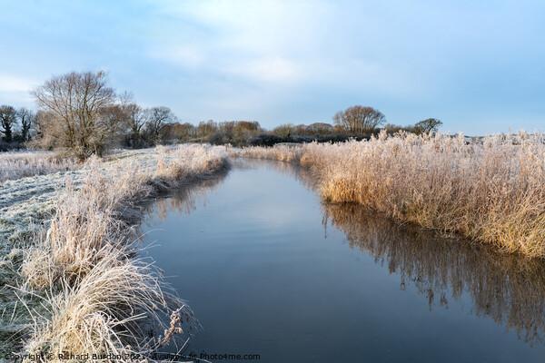 A Winter Walk Framed Print by Richard Burdon