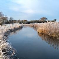 Buy canvas prints of A Winter Walk by Richard Burdon