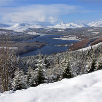 Buy canvas prints of View from Glen Garry by Gail Johnson
