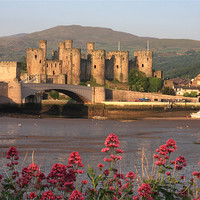 Buy canvas prints of Conwy by Gail Johnson