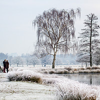 Buy canvas prints of Frosty day at the pond by Kish Woolmore