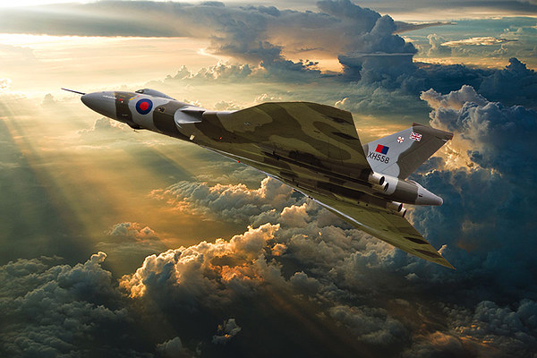Majestic Flight Canvas print by Stephen Ward