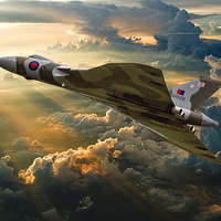 Buy canvas prints of  Majestic Flight by Stephen Ward