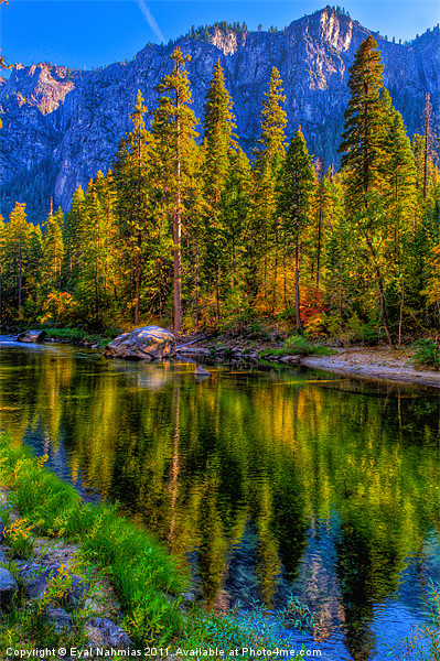 Reflections on the Merced river, Yosemite National Framed Mounted Print by Eyal Nahmias