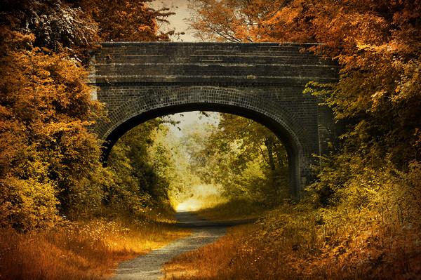 Path under a bridge Canvas print by Svetlana Sewell