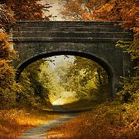 Buy canvas prints of  Path under a bridge by Svetlana Sewell
