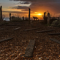 Buy canvas prints of Worthing  Waterwise Garden at Sunset   by Len Brook