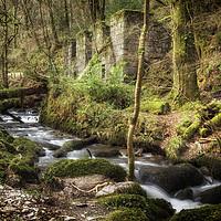 Buy canvas prints of Kennall Vale Gunpowder Mills by Len Brook