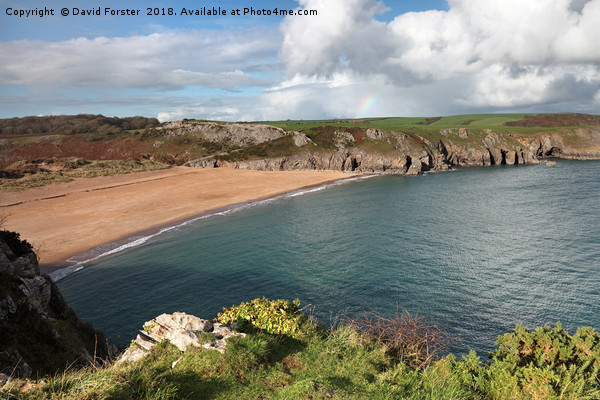 Beautiful Barafundle Bay From the Pembrokeshire Co Canvas print by David Forster