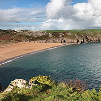 Buy canvas prints of Beautiful Barafundle Bay From the Pembrokeshire Co by David Forster