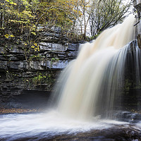 Buy canvas prints of Summerhill Force and Gibson's Cave in Autumn by David Forster